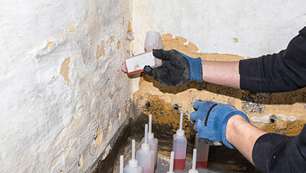 Mould Removal Services located in Sydney
